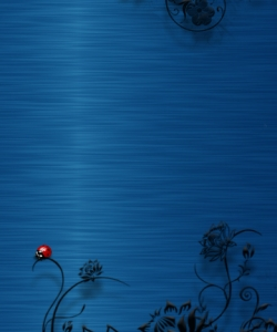 nokia-5800-wallpaper-360-640-312.jpg