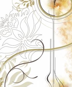 nokia-n97-wallpapers-360-640-dailymobile-667.jpg