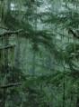 tapety-nokia-5800-xpressmusic-07